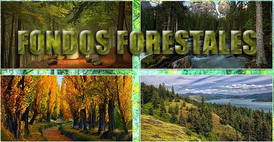 fondosForestales